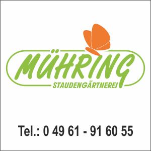muehring-1